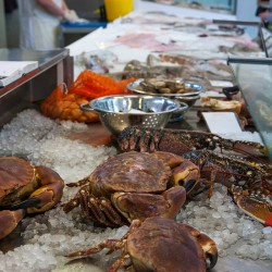 Plymouth Seafood Events